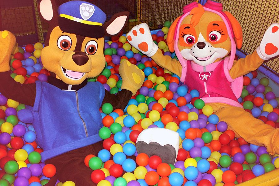 piscina-de-bolas-mascotas